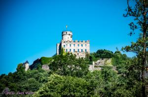 Burg Pyrmont 2